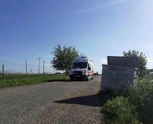 Diyarbakır'da inekler tarlaya girdi taşlı sopalı kavga çıktı!