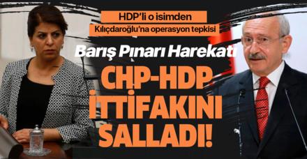 Barış Pınarı Harekatı CHP-HDP ittifakını salladı! HDP'li Sibel Yiğitalp'den Kılıçdaroğlu'na operasyon tepkisi…