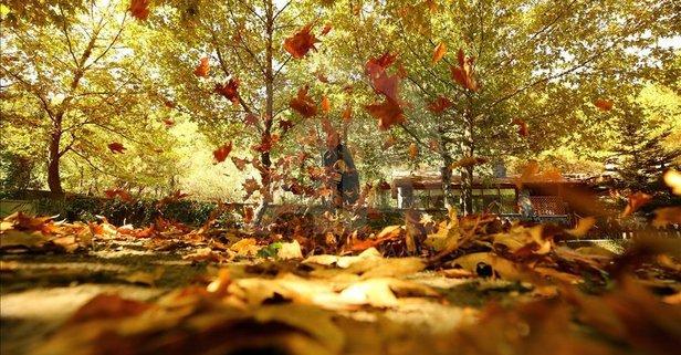 En güzel sonbahar sözleri! Sonbaharla ilgili romantik sözler! Arkadaşa sevgiliye sonbahar mesajları!