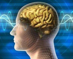 Bu besin direkt beyni etkiliyor!