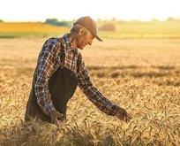 Atıl tarım arazileri üretime açılıyor