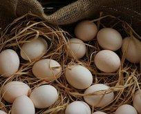 Astıma yumurta kır!