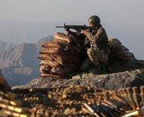 Siirt'te PKK'lı 2 terörist etkisiz hale getirildi