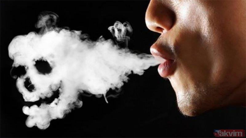 Sigara'nın verdiği zararları azaltan süper besinler