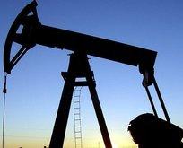 Brent petrol ne kadar?