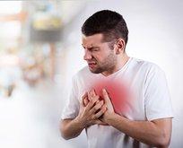 Baharda kalbin düşmanı:Arı