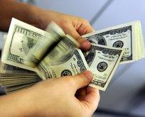 Bugün dolar ve euro ne kadar oldu?