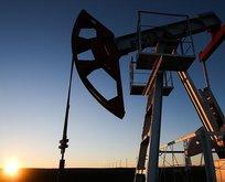 OPEC petrol üretimini artırıyor