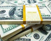 Dolar kaç TL? Euro bugün ne kadar oldu? 18 Ocak CANLI döviz kurları!