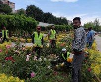İBB kaçak ve sigortasız işçi çalıştırıyor