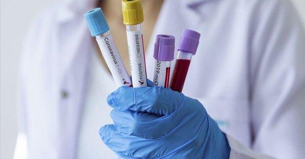 Danimarka'dan virüse karşı dev yatırım