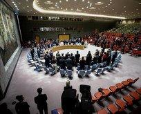 Türkiyeden BMde ateşkes çağrısı
