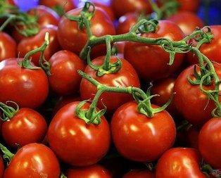 Aşk domatesi