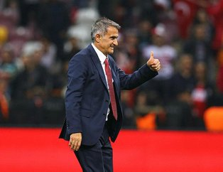 Şenol Güneş, Türkiye-İzlanda maçı sonrası hayalini açıkladı! Bizim için asıl hedef...