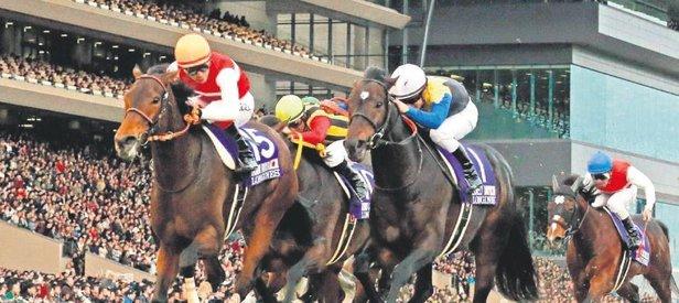 At yarışı-piyango aynı pakette