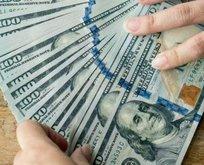 Dolar kaç TL? Euro bugün ne kadar oldu? 20 Ocak CANLI döviz kurları!