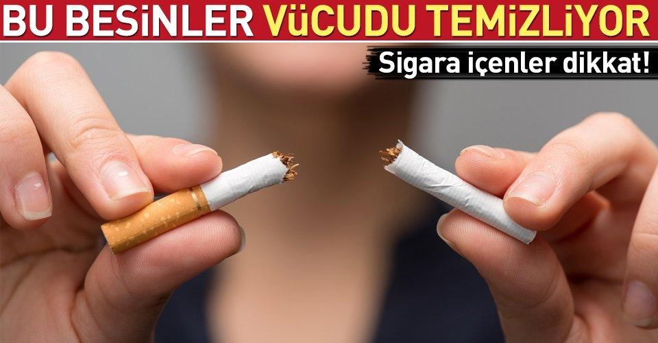 Vücutta dolaşan nikotini dışarı atan besinler
