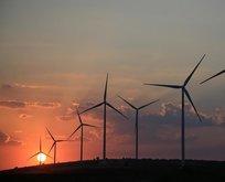 Yenilenebilir enerji sektöründe istihdam zirve yapacak