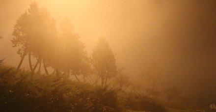 İstanbul'da sis etkili oldu! Sürücüler zor anlar yaşadı