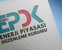 EPDK'dan 11 şirkete lisans!