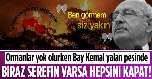 Ormanlar yok olurken Bay Kemal yalan peşinde