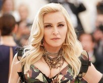 Madonna'yı kedicik yapacakmış