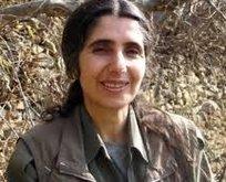 PKK'ya SİHA darbesi